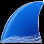 Wireshark последняя версия