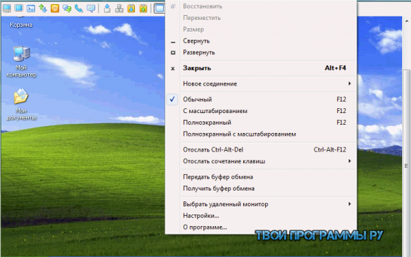 Radmin для Windows