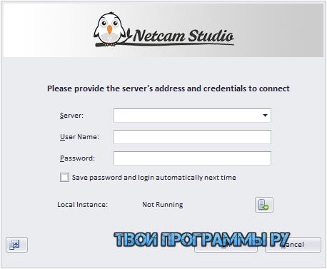 Netcam Studio русская версия