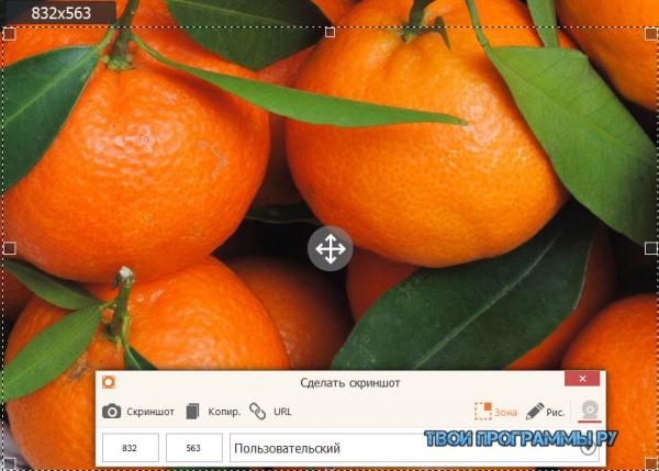 IceCream Screen Recorder для Windows