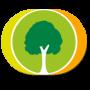 Family Tree Builder новая версия