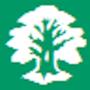 Твоё родословное дерево новая версия