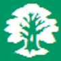 Твоё родословное дерево последняя версия