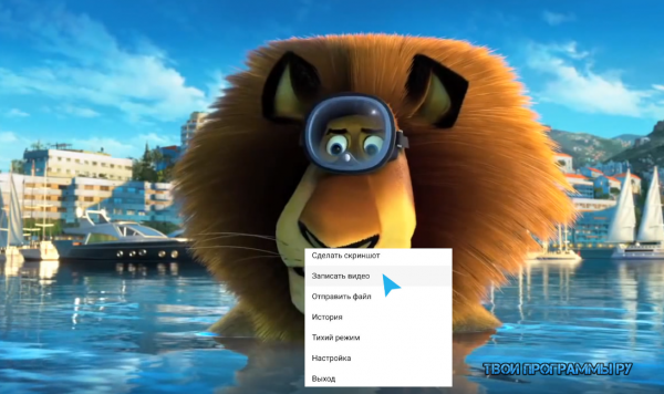 Скриншотер новая версия